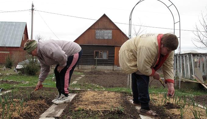 Дачники дорого заплатят за перевод в садоводы