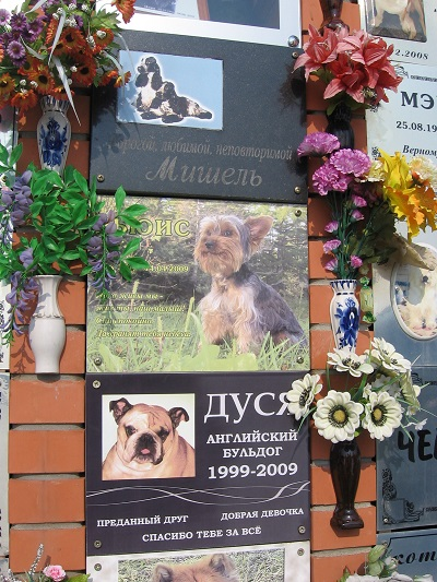 Дикое кладбище домашних животных