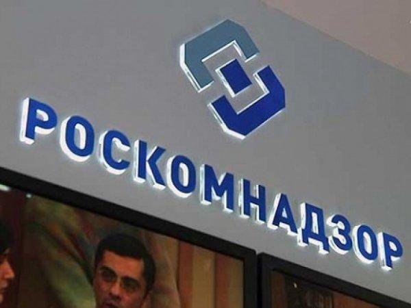 Роскомнадзор заблокировал десятки «зеркальных» пиратских сайтов