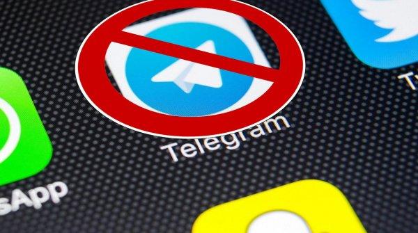 В Роскомнадзоре оценили шансы на полную блокировку Telegram