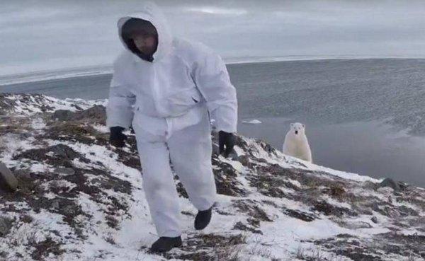 «Сталь между ног»: Русский бесстрашный фотограф, показал как надо фотографировать полярного медведя