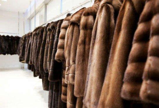 Если вы хотите выглядеть незабываемо, то вам нужно приобрести качественные меховые изделия в нашем интернет-магазине